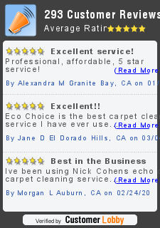 Review of Eco Choice Carpet Cleaning
