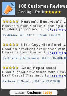 Review of Heaven's Best Carpet Cleaning