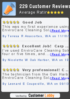 Review of ENVIROCARE CARPET CLEANING