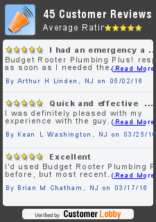 Review of Budget Rooter Plumbing Plus!