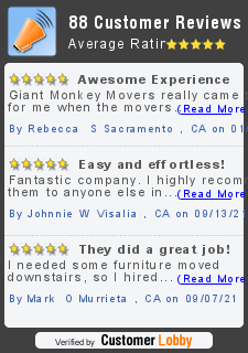 Review of Giant Monkey Movers